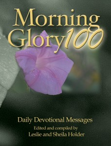 Morning Glory 100